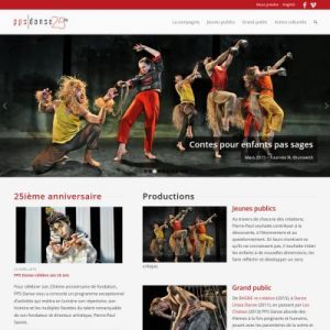 Website Design Portfolio - PPSdanse
